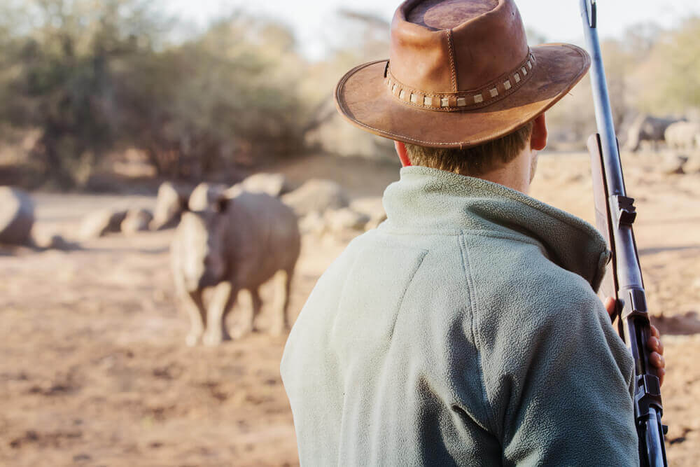 FinanceBrokerage – Techinfo: Sigfox is developing a tracker that would help for the protection of rhinos from poaching