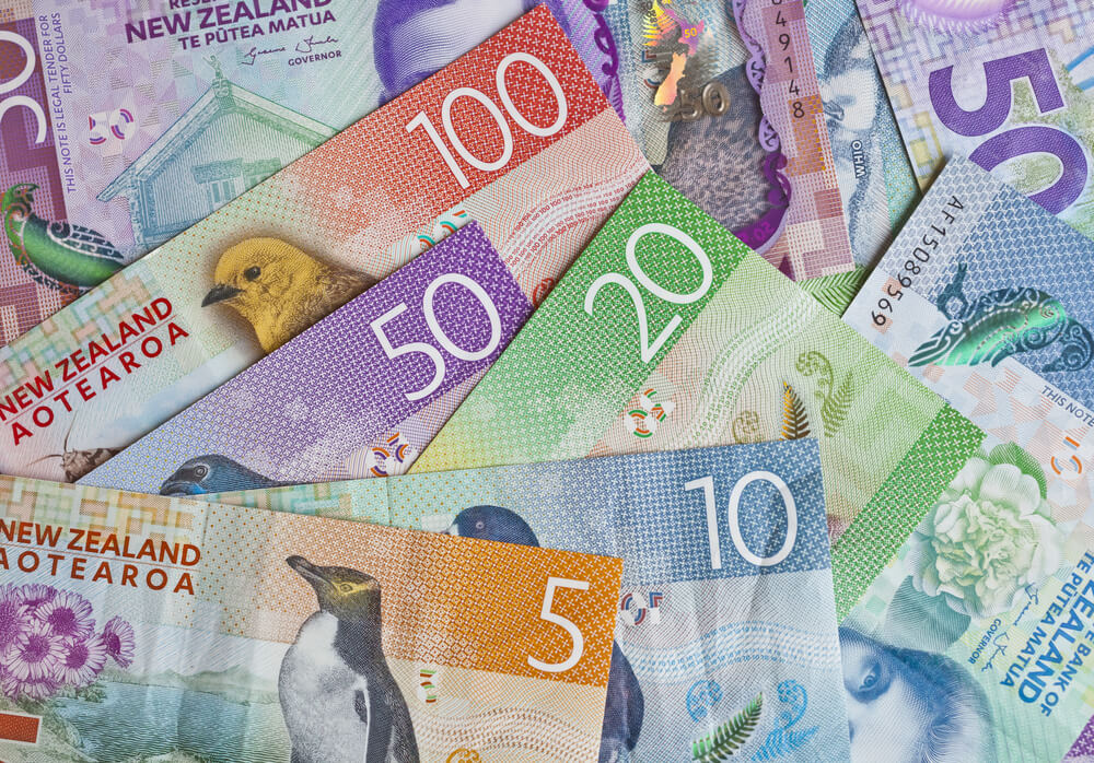 Kiwi - Finance Brokerage