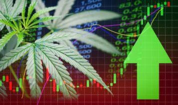 Share Market – Marijuana leave with a green upward arrow and stock market graph on the background – Finance Brokerage