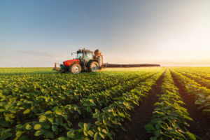 Export of soybeans and political climate