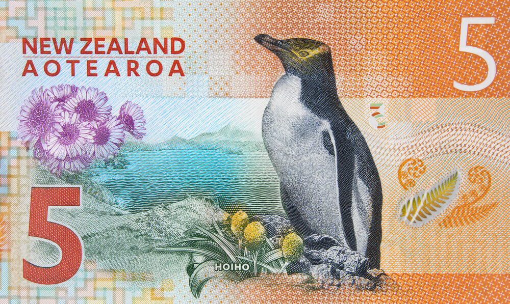 Finance Brokerage – Reserve Bank of New Zealand: New Zealand 5 dollar banknote close up.