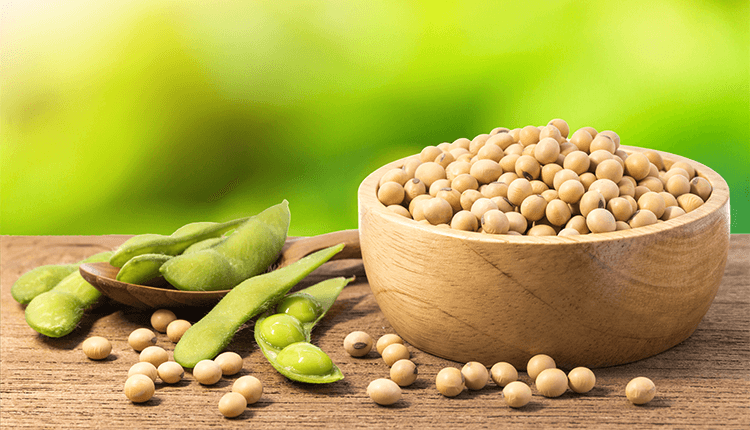 Soybeans prices at 2-Week High; Tariff Waivers Supported by China - Finance Brokerage
