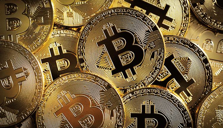 Ethereum Gold   Logo Bitcoin Satoshi Trader Finance Geek Felpa con Cappuccio : festivaldelcinemaindipendente.it: Moda