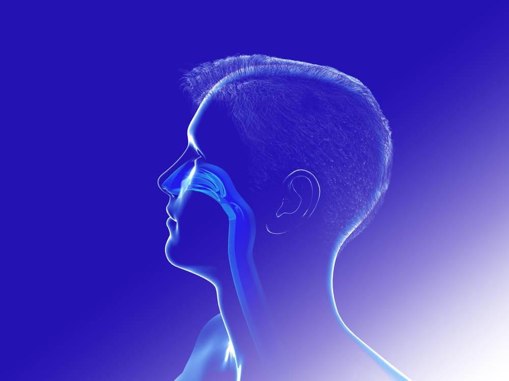 Inteligência artificial desenvolverá olfato